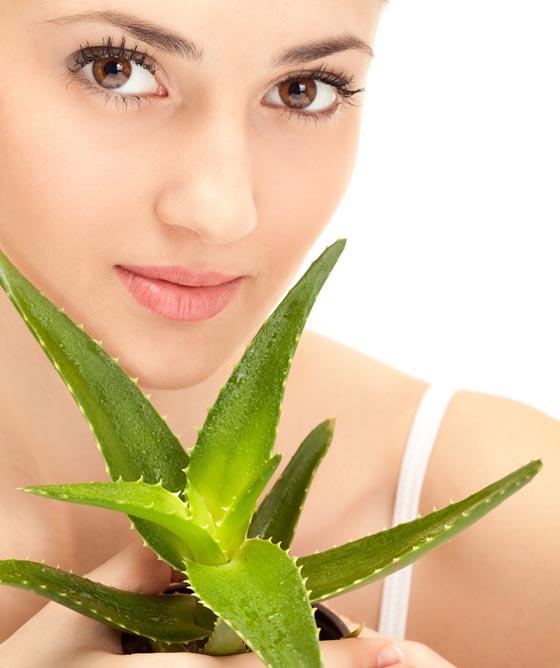Aloe-Vera-Naturkosmetik für Gesicht und Körper!